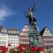 Romer in Frankfurt -  