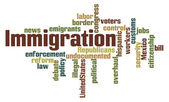 Immigration Word Cloud — Stock fotografie