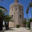 Torre del Oro (Gold Tower) — Stock Photo #25551963