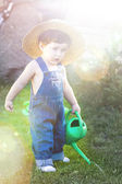 Little baby gardener concentrate in his work under sunburst — Stock Photo