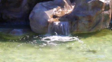 Beautiful waterfall in the rocks — Stock Video