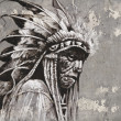Portrait of native american indian head over textured wall — Stock Photo