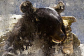 Artistic image with background texture bear head — Stock Photo