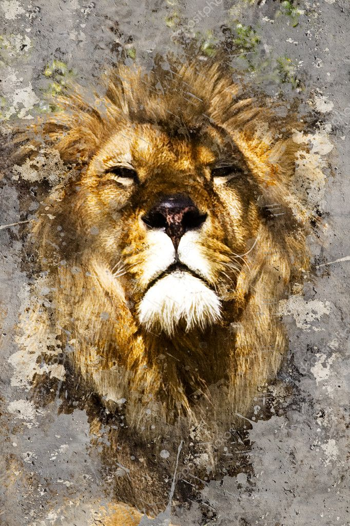 Artistic portrait with textured background, lion head — Stock Photo #18928585