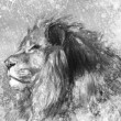 Foto de Stock  : Lion tattoo illustration art, handmade drawing