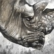 White rhino (Ceratotherium simum) illustration made with digital — Foto Stock