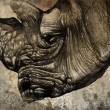 Sketch made with digital tablet of rhino head — Stock Photo