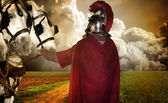 Portrait of a legionary soldier with horses — Stock Photo