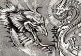 Dragons, tattoo illustration over grey wall — Stock Photo