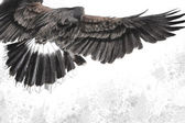 Low-flying eagle illustration over artistic background, made wit — Stock Photo