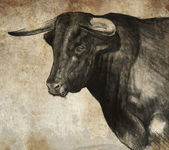 Sketch made with digital tablet of spanish bull — Stock Photo