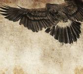 摹写与数字平板电脑的美国鹰 — 图库照片