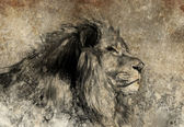Illustration made with digital tablet, lion in sepia — Stock Photo