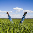 Concept of freedom and joy, man with jeans lying in wheat field — Stok fotoğraf