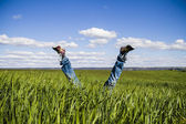 Concept of freedom and joy, man with jeans lying in wheat field — Stock Photo