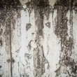 Stock Photo: Dirty wall with urbtextures
