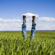 Concept of freedom and joy, man with jeans lying in wheat field, — Stock Photo