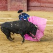 Stock Photo: Bullfight in Camarma of Esteruelas, Madrid. 2011.