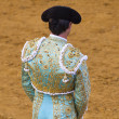 Stock Photo: Bullfight in Camarmof Esteruelas, Madrid. 2011.