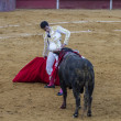 Stock Photo: Bullfight in Camarmof Esteruelas.