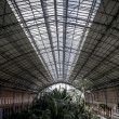Atocha train station — Stock Photo #39719223