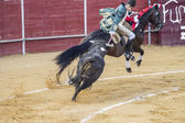 Bullfight in Camarma of Esteruelas, Madrid. 2011. — Stock Photo