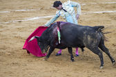 Jose Antonio Canales Rivera, Spanish bullfighter. — Stock Photo