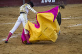 Bullfight in Camarma of Esteruelas. — Foto Stock