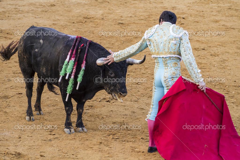 Spansk tjurfäktare
