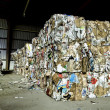 Stock Photo: Recycle plant.