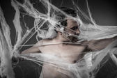 Man tangled in spider web — Stock Photo