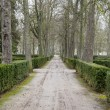 Beautiful gardens Palace of Aranjuez — Stock fotografie #41286595
