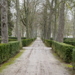 Стоковое фото: Beautiful gardens Palace of Aranjuez