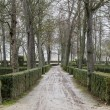 Beautiful gardens Palace of Aranjuez — Stock fotografie #41286615