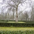 Beautiful gardens Palace of Aranjuez — Stock fotografie #41286655