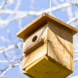 Bird house on the tree — Stock Photo