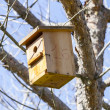 Stock Photo: Bird house on the tree