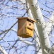 Bird house on the tree — Stock Photo #41434347
