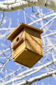 Bird-box. — Stock Photo