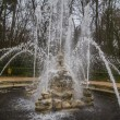 Ornamental fountains — Stock Photo #41647301