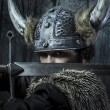 Viking warrior — Stock Photo #41880589