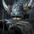 Viking warrior — Stock Photo