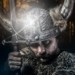 Viking warrior — Stock Photo