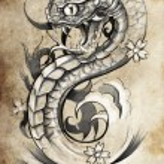 Snake tattoo illustration — Stock Photo #43108581