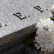 DEP cemetery detail with white flowers — Stock Photo