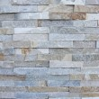 Wall texture, diverse bricks styles — Stock Photo #44068879