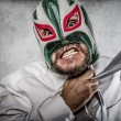 Man in mexican wrestler mask — Stock Photo #49022003