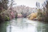 Tajo river, Palace of Aranjuez — Stock Photo