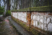 Wall in the Tajo river. — Stock Photo