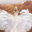 Female angel posing over an autumn sunset — Stock Photo #15311353